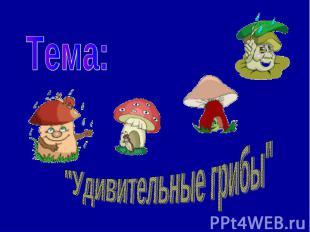 """Тема: """"Удивительные грибы"""""""