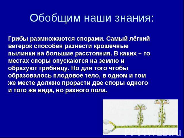 Обобщим наши знания: Грибы размножаются спорами. Самый лёгкий ветерок способен разнести крошечные пылинки на большие расстояния. В каких – то местах споры опускаются на землю и образуют грибницу. Но для того чтобы образовалось плодовое тело, в одном…