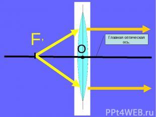 Главная оптическая ось.