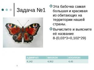Задача №1 Эта бабочка самая большая и красивая из обитающих на территории нашей