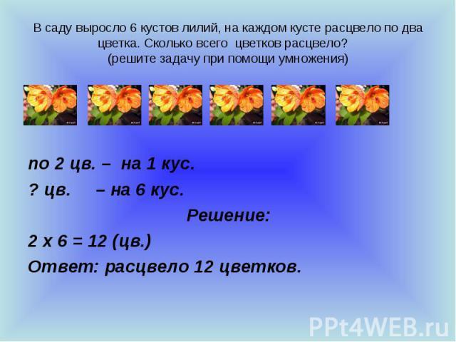 В саду выросло 6 кустов лилий, на каждом кусте расцвело по два цветка. Сколько всего цветков расцвело? (решите задачу при помощи умножения) по 2 цв. – на 1 кус. ? цв. – на 6 кус. Решение: 2 х 6 = 12 (цв.) Ответ: расцвело 12 цветков.