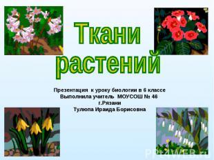 Ткани растений Презентация к уроку биологии в 6 классе Выполнила учитель МОУСОШ