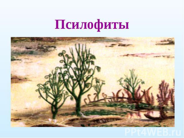 Псилофиты