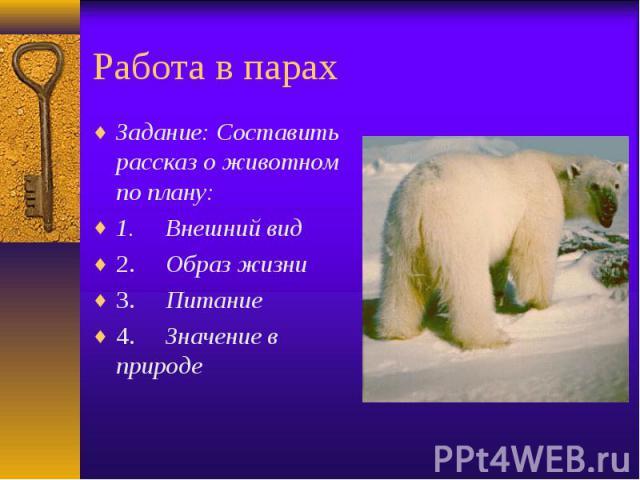 Работа в парах Задание: Составить рассказ о животном по плану: 1. Внешний вид 2. Образ жизни 3. Питание 4. Значение в природе