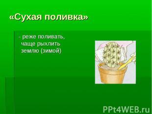 «Сухая поливка» - реже поливать, чаще рыхлить землю (зимой)