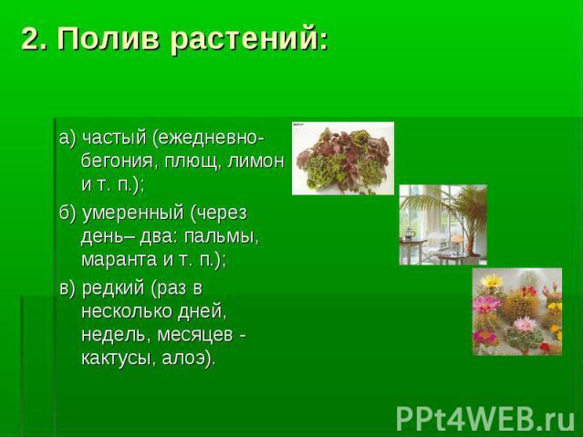 2. Полив растений: а) частый (ежедневно- бегония, плющ, лимон и т. п.); б) умеренный (через день– два: пальмы, маранта и т. п.); в) редкий (раз в несколько дней, недель, месяцев - кактусы, алоэ).