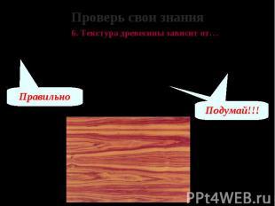 Проверь свои знания 6. Текстура древесины зависит от… А – породы дерева, возраст