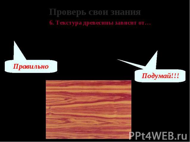 Проверь свои знания 6. Текстура древесины зависит от… А – породы дерева, возраста и условий в которых оно росло Б – расстояния от сердцевины дерева до его кромки В – способа обработки древесины