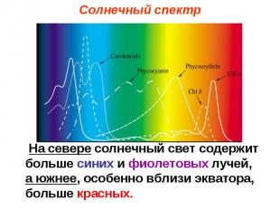 Солнечный спектр На севере солнечный свет содержит больше синих и фиолетовых луч