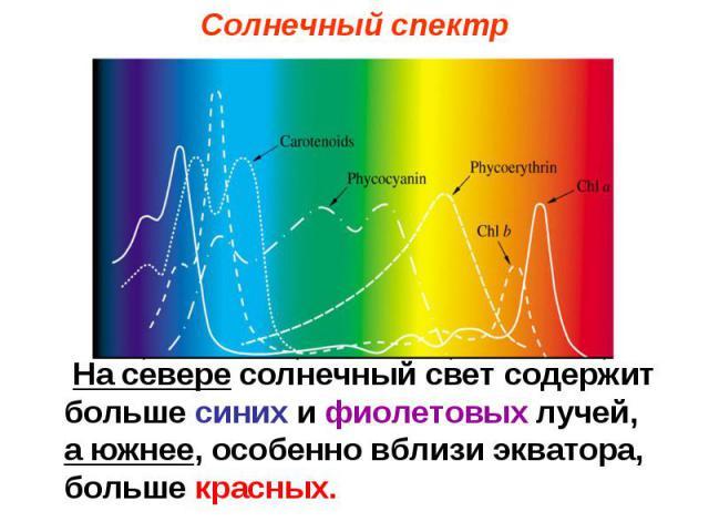 Солнечный спектр На севере солнечный свет содержит больше синих и фиолетовых лучей, а южнее, особенно вблизи экватора, больше красных.