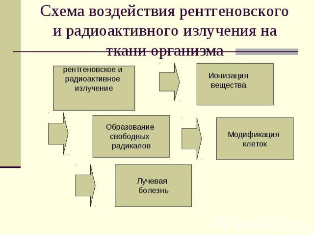 Схема воздействия рентгеновского и радиоактивного излучения на ткани организма