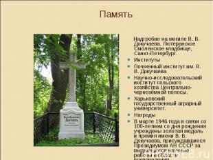 Память Надгробие на могиле В. В. Докучаева. Лютеранское Смоленское кладбище, Сан