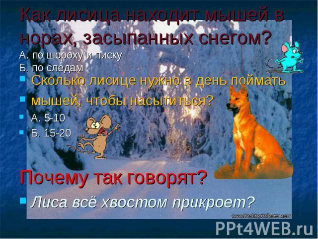 Как лисица находит мышей в норах, засыпанных снегом? А. по шороху и писку Б. по следам Сколько лисице нужно в день поймать мышей, чтобы насытиться? А. 5-10 Б. 15-20 Почему так говорят? Лиса всё хвостом прикроет?