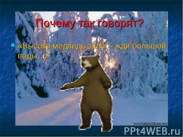 Почему так говорят? «Высоко медведь залёг - жди большой воды…»