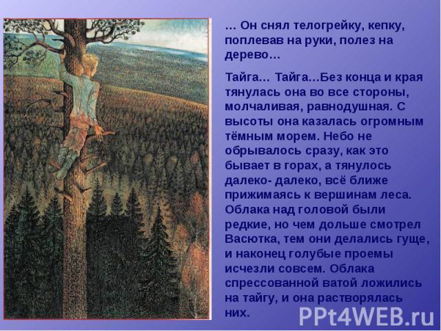 … Он снял телогрейку, кепку, поплевав на руки, полез на дерево… Тайга… Тайга…Без конца и края тянулась она во все стороны, молчаливая, равнодушная. С высоты она казалась огромным тёмным морем. Небо не обрывалось сразу, как это бывает в горах, а тяну…