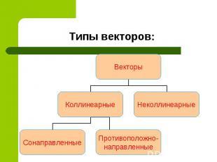 Типы векторов: