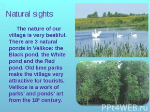 Natural sights The nature of our village is very beatiful. There are 3 natural p