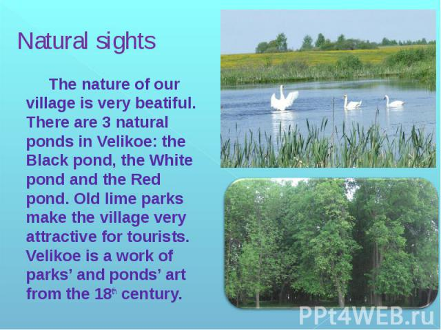 Natural sights The nature of our village is very beatiful. There are 3 natural ponds in Velikoe: the Black pond, the White pond and the Red pond. Old lime parks make the village very attractive for tourists. Velikoe is a work of parks' and ponds' ar…