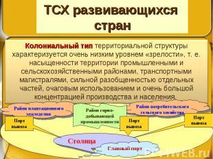 ТСХ развивающихся стран Колониальный тип территориальной структуры характеризует