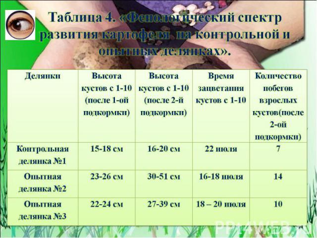 Таблица 4. «Фенологический спектр развития картофеля на контрольной и опытных делянках».