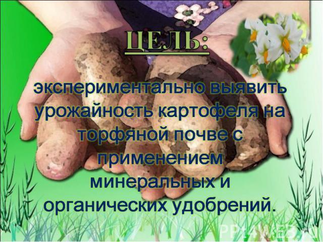 ЦЕЛЬ: экспериментально выявить урожайность картофеля на торфяной почве с применением минеральных и органических удобрений.