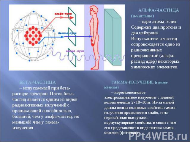 АЛЬФА-ЧАСТИЦА (a-частица) – ядро атома гелия. Содержит два протона и два нейтрона. Испусканием a-частиц сопровождается одно из радиоактивных превращений (альфа-распад ядер) некоторых химических элементов. БЕТА-ЧАСТИЦА – испускаемый при бета-распаде …
