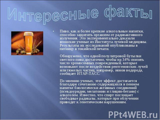 Интересные факты Пиво, как и более крепкие алкогольные напитки, способно защитить организм от радиоактивного излучения. Это экспериментально доказали японские ученые из Института лучевой медицины. Результаты их исследований опубликованы в пятницу в …