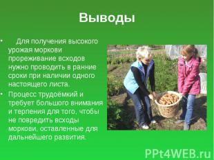 Выводы Для получения высокого урожая моркови прореживание всходов нужно проводит