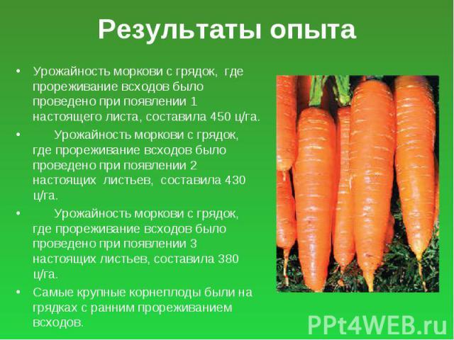 Результаты опыта Урожайность моркови с грядок, где прореживание всходов было проведено при появлении 1 настоящего листа, составила 450 ц/га. Урожайность моркови с грядок, где прореживание всходов было проведено при появлении 2 настоящих листьев, сос…