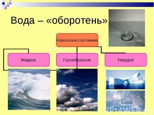 Вода – «оборотень»
