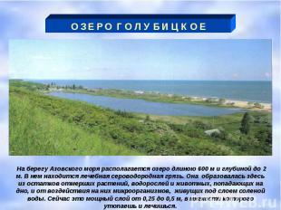 О З Е Р О Г О Л У Б И Ц К О Е На берегу Азовского моря располагается озеро длино