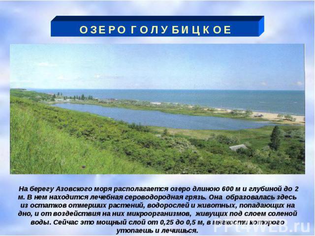 О З Е Р О Г О Л У Б И Ц К О Е На берегу Азовского моря располагается озеро длиною 600 м и глубиной до 2 м. В нем находится лечебная сероводородная грязь. Она образовалась здесь из остатков отмерших растений, водорослей и животных, попадающих на дно,…