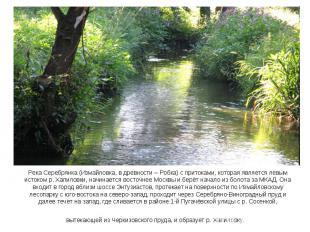 Река Серебрянка (Измайловка, в древности – Робка) с притоками, которая является