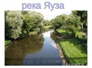 река Яуза