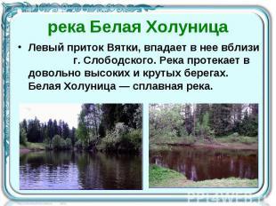 река Белая Холуница Левый приток Вятки, впадает в нее вблизи г. Слободского. Рек
