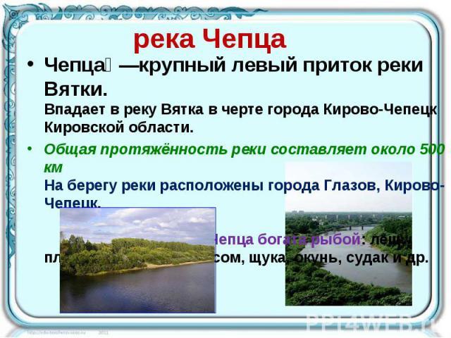 река Чепца Чепца —крупный левый приток реки Вятки. Впадает в реку Вятка в черте города Кирово-Чепецк Кировской области. Общая протяжённость реки составляет около 500 км На берегу реки расположены города Глазов, Кирово-Чепецк. Чепца богата рыбой: лещ…