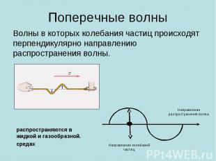 Поперечные волны Волны в которых колебания частиц происходят перпендикулярно нап