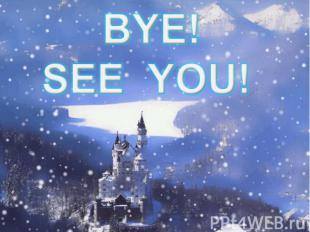 BYE! SEE YOU!