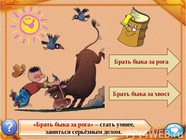 «Брать быка за рога» – стать умнее, заняться серьёзным делом.