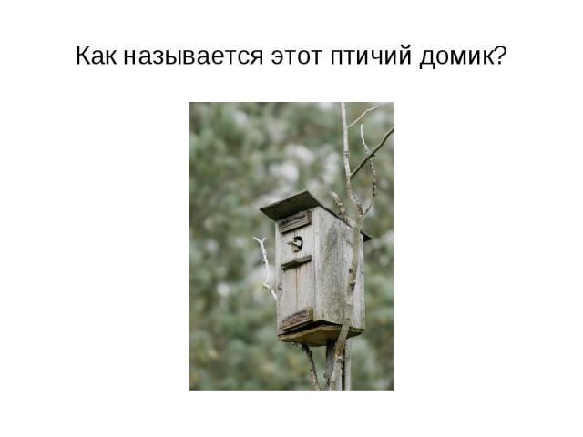 Как называется этот птичий домик?