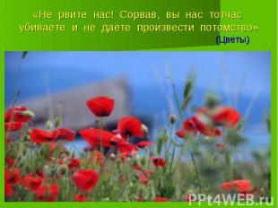 «Не рвите нас! Сорвав, вы нас тотчас убиваете и не даёте произвести потомство» (