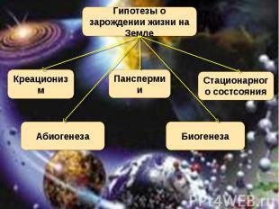 Гипотезы о зарождении жизни на Земле Креационизм Панспермии Стационарного состсо