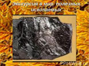 Экскурсия в мир полезных ископаемых