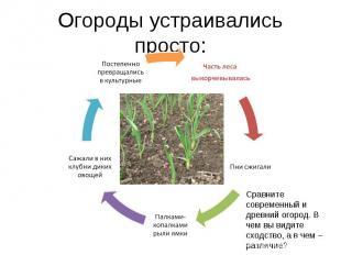 Огороды устраивались просто:Сравните современный и древний огород. В чем вы види