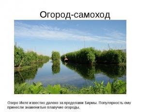 Огород-самоходОзеро Инле известно далеко за пределами Бирмы. Популярность ему пр