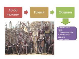40-60 человек Племя Община Совместный труд Взаимовыручка Совместная охрана терри