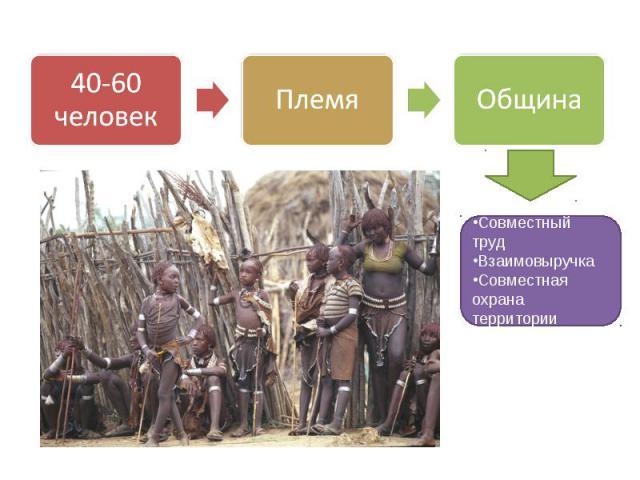 40-60 человек Племя Община Совместный труд Взаимовыручка Совместная охрана территории