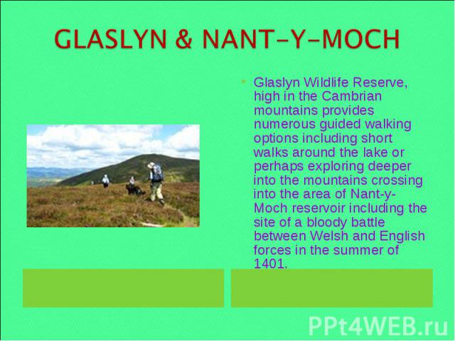 GLASLYN & NANT-Y-MOCH Glaslyn Wildlife Reserve, high in the Cambrian mountains provides numerous guided walking options including short walks around the lake or perhaps exploring deeper into the mountains crossing into the area of Nant-y-Moch reserv…