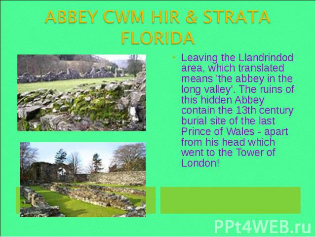 ABBEY CWM HIR & STRATA FLORIDA Leaving the Llandrindod area, which translated means 'the abbey in the long valley'. The ruins of this hidden Abbey contain the 13th century burial site of the last Prince of Wales - apart from his head which went to t…
