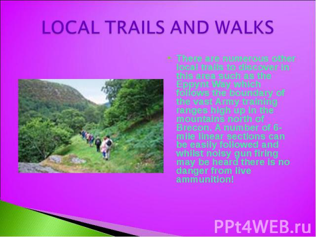 LOCAL TRAILS AND WALKS There are numerous other local trails to discover in this area such as the Eppynt Way which follows the boundary of the vast Army training ranges high up in the mountains north of Brecon. A number of 6-mile linear sections can…